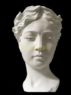 Helen Saksı Orta Boy HYK91